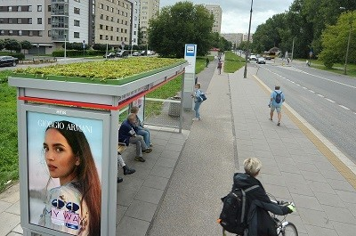 Plants on the roofs of Warsaw's Bus Shelters