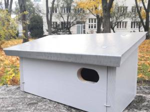 250 nest boxes for swifts and sparrows to be placed in the Śródmieście district.