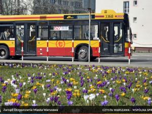 Spring flowers blossoming at urban transport terminus stations